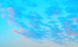 2014-03-04 06.55.35 (2)